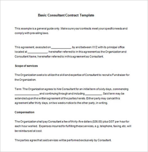 Basic Consultant Contract Template