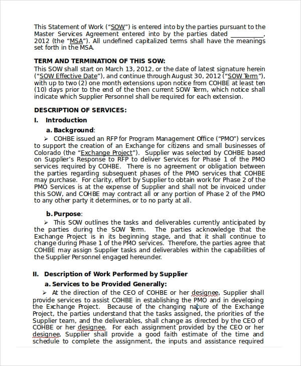 Consultant Statement of Work Template