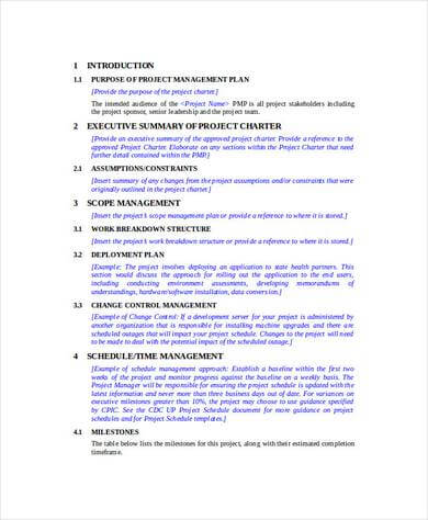 Project Management Proposal Template Google Docs