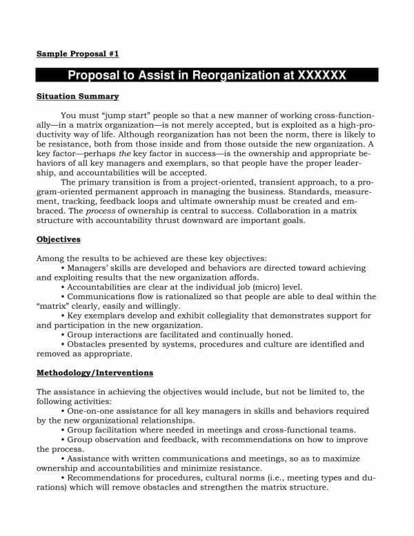 Freelance Proposal Template Sample