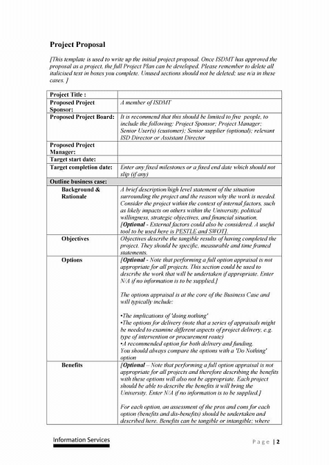 Professional Proposal Template Example