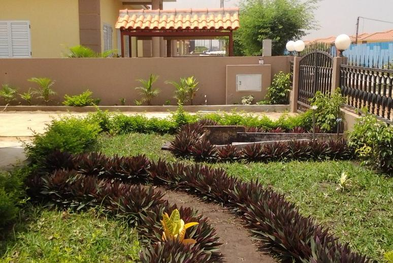 Jovens angolanos criam detector de humidade para jardins