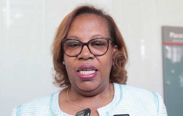 A actualização do material curricular é imprescindível para se atingir a qualidade do ensino, afirma ministra da Educação
