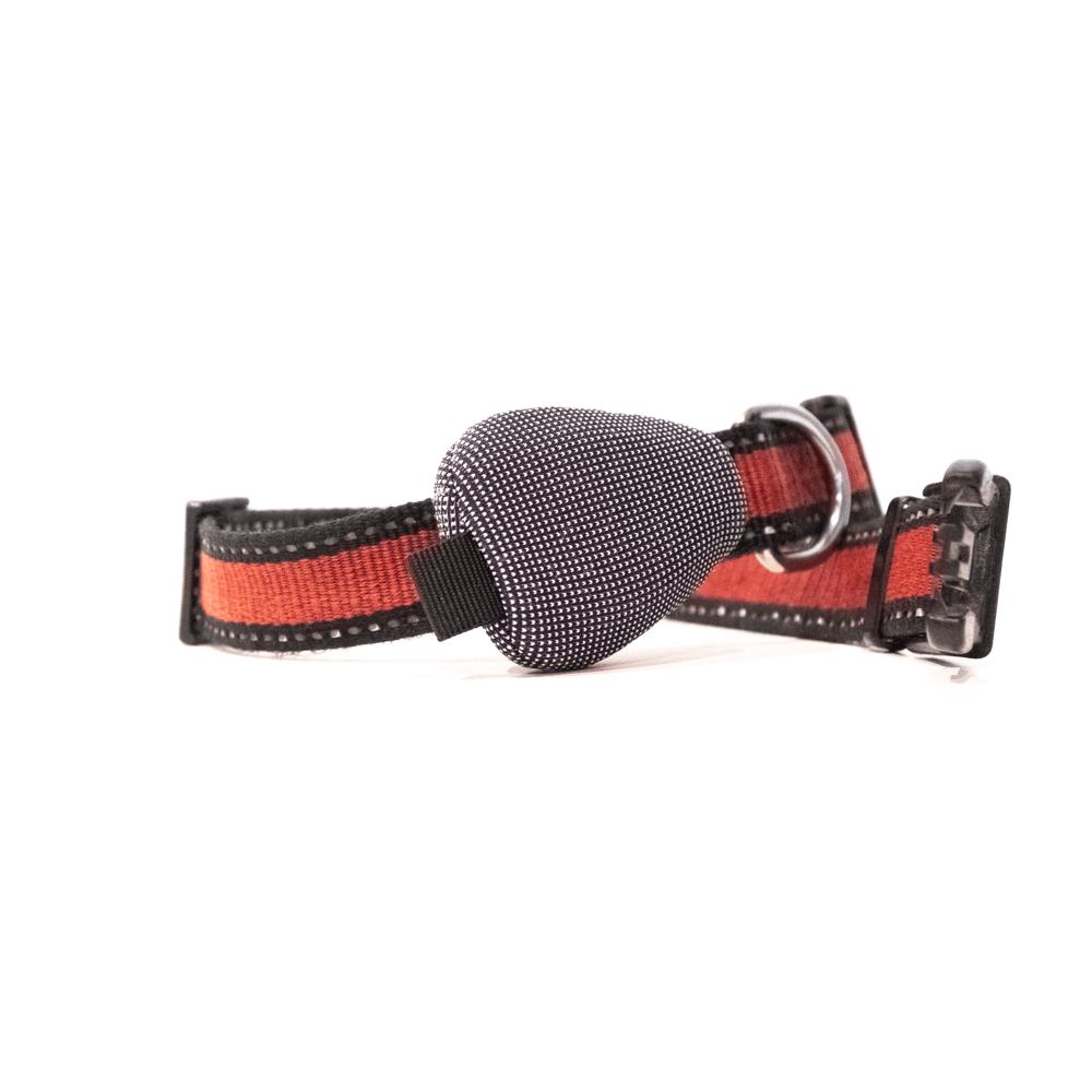 Fabric Sleeve on dog collar
