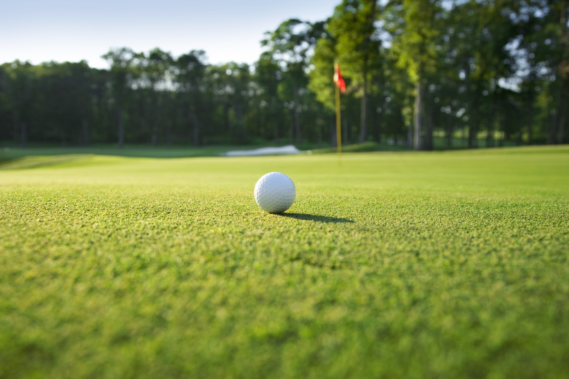 Golfing in North Devon