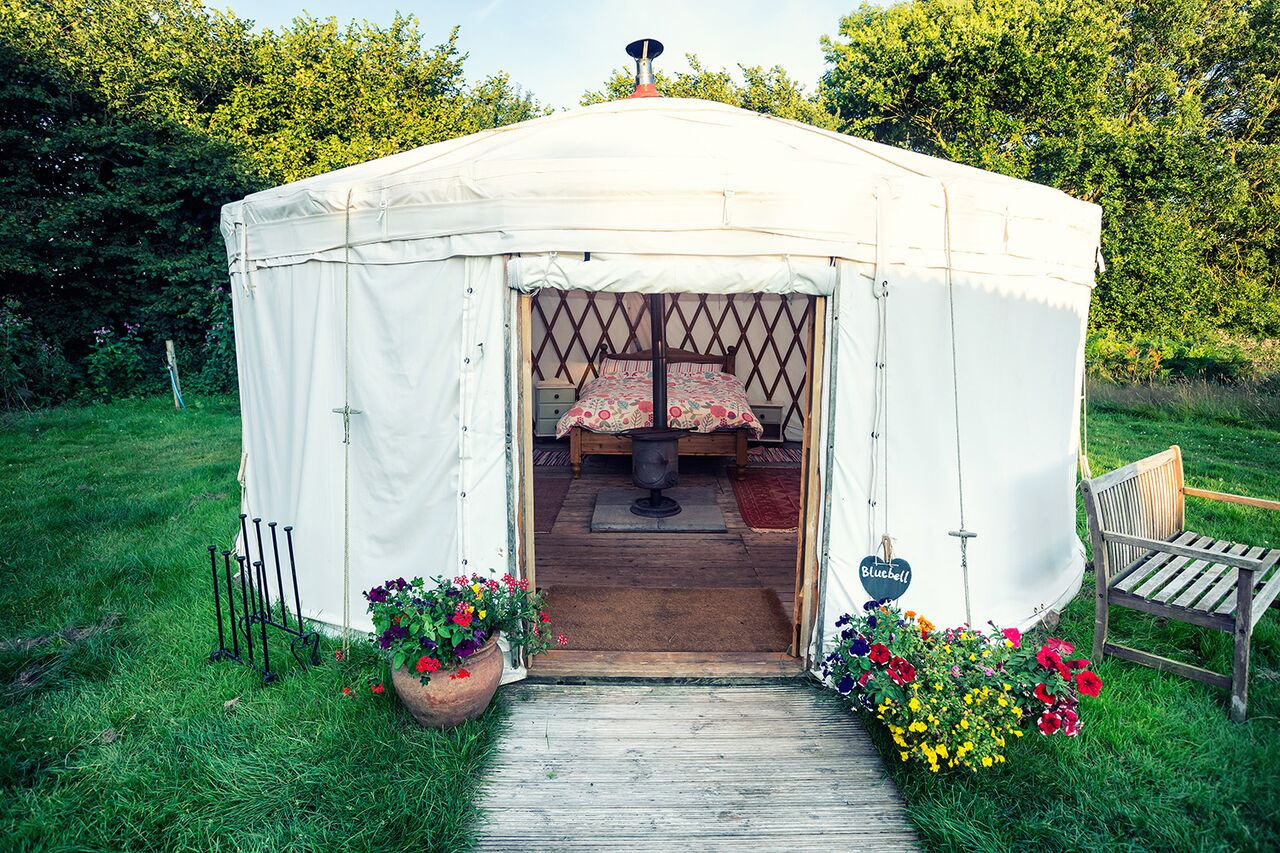 Clover Yurt at Cuckoo Down Farm