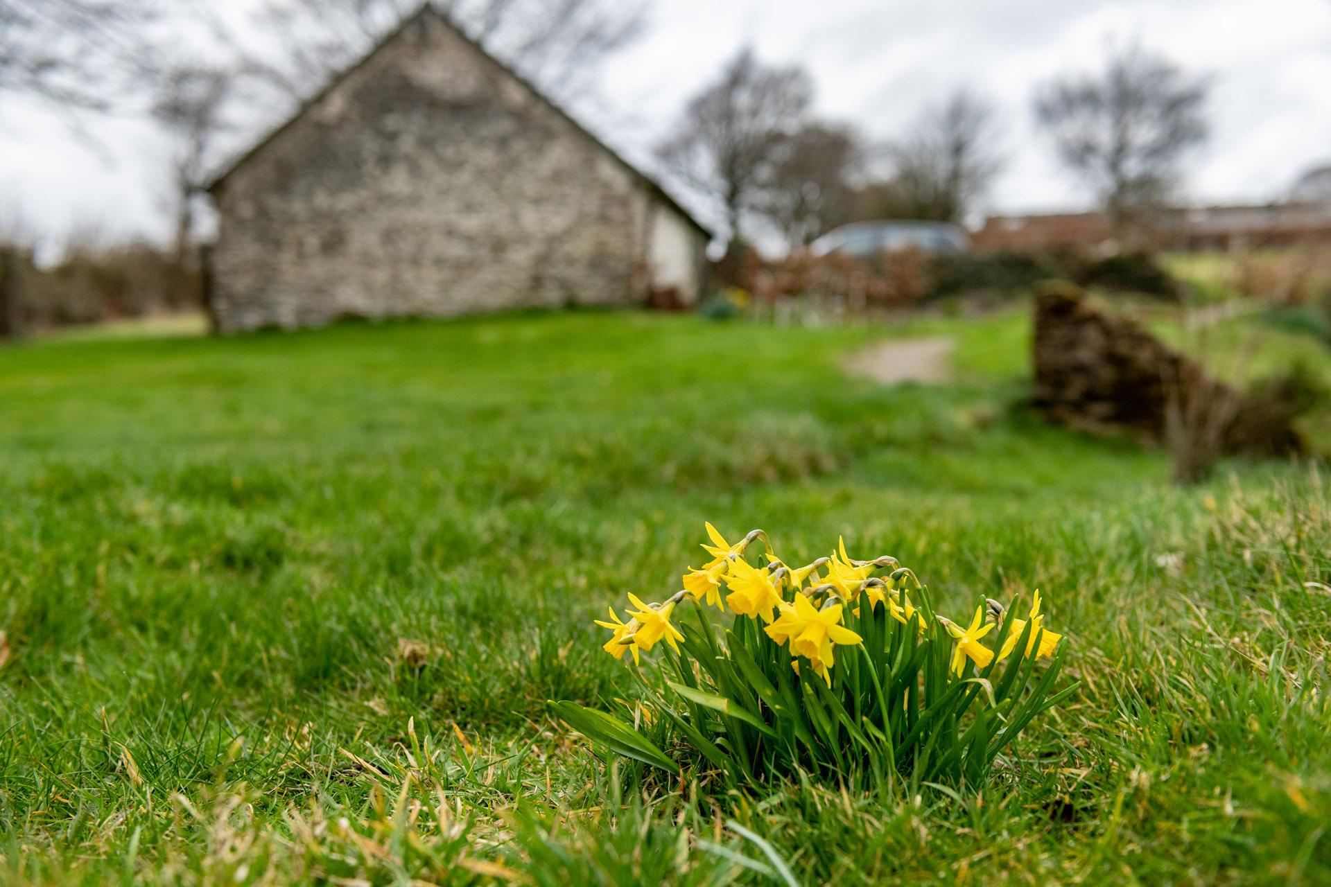 Lower Leys Cottage