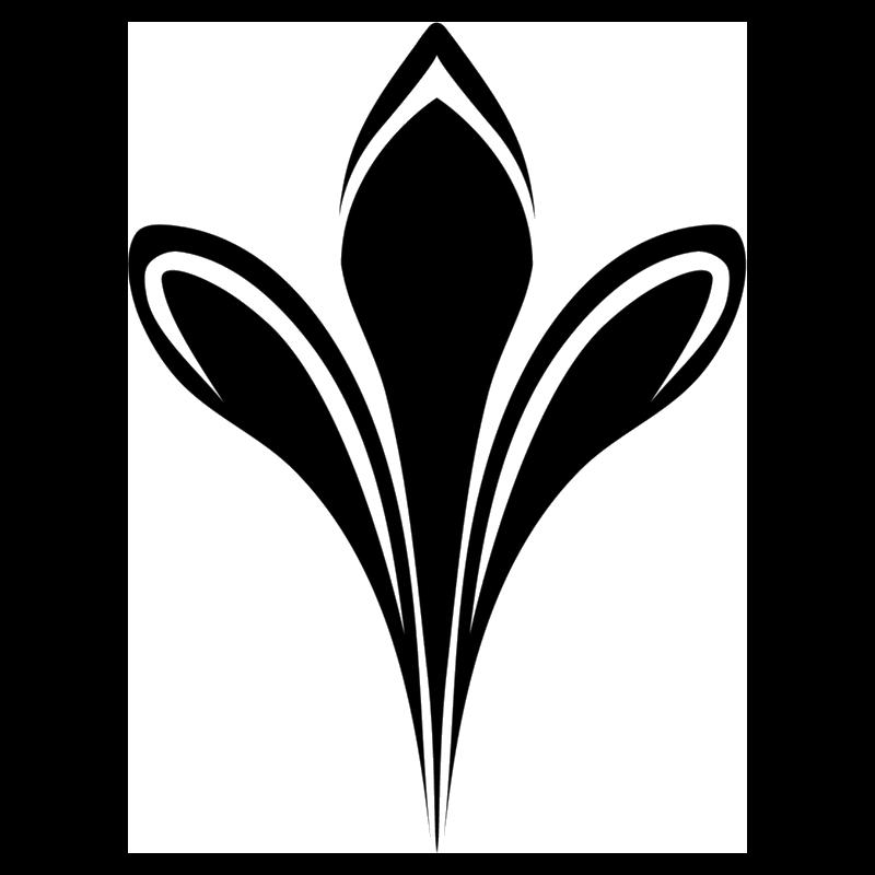 Tri Valley Plastic Surgery Logo