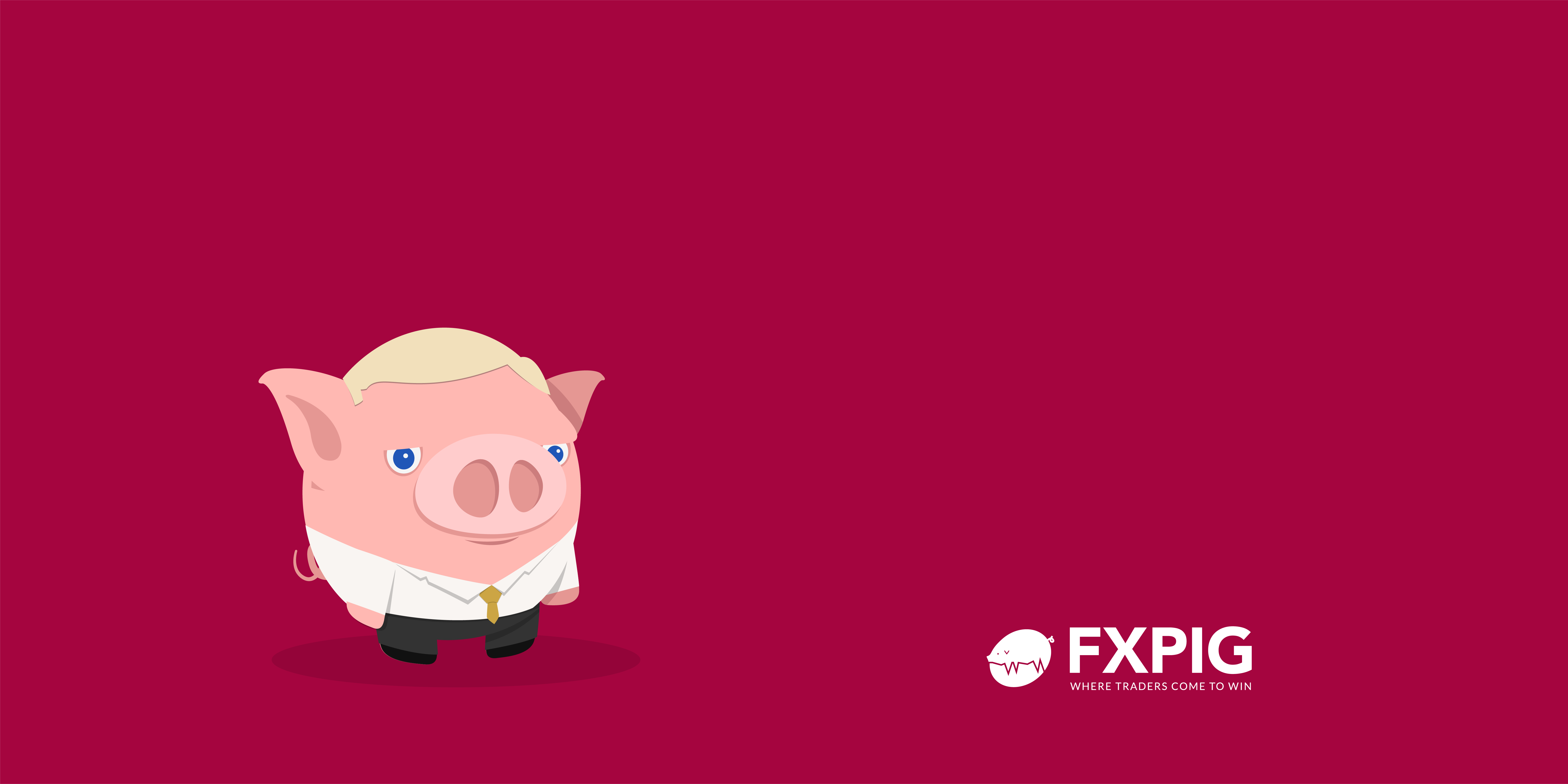 Forex-trading-quote_uncertainty-of-the-market-SEYKOTA-FXPIG