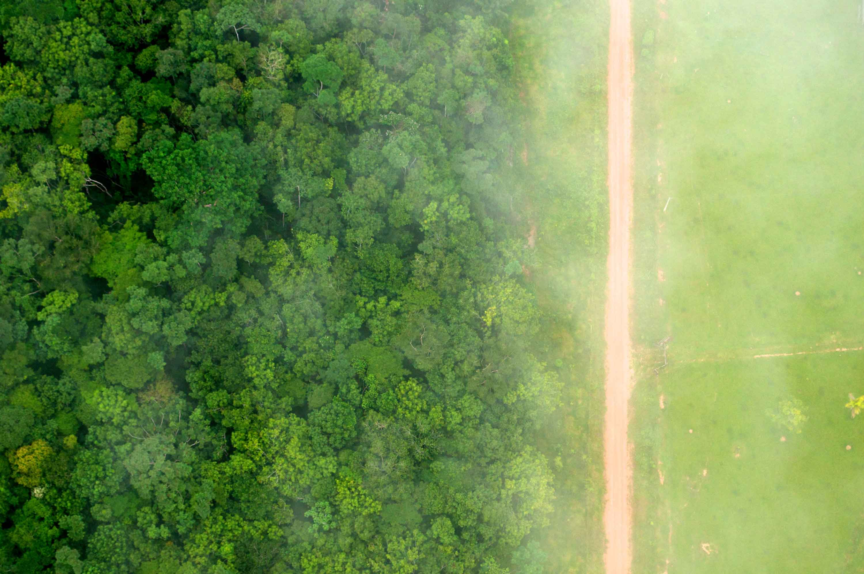A bird's eye view of the stark contrast between the forest and agricultural landscapes near Rio Branco, Acre, Brazil. Photo by Kate Evans for Center for International Forestry Research (CIFOR), licensed under CC BY-NC 2.0.