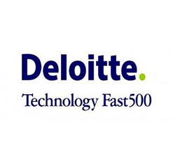 Deloitte Capitalvia