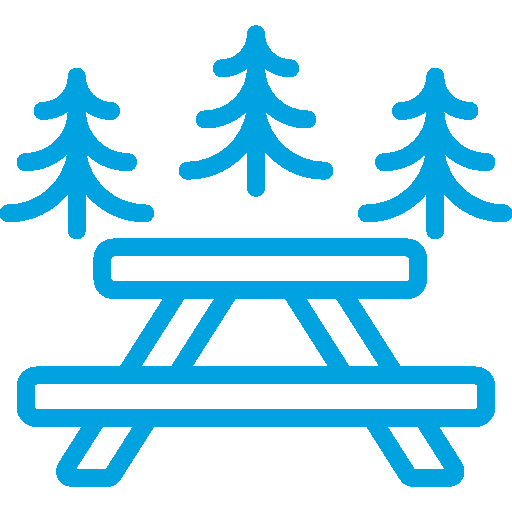 Picnic Table in Front of Pine Trees