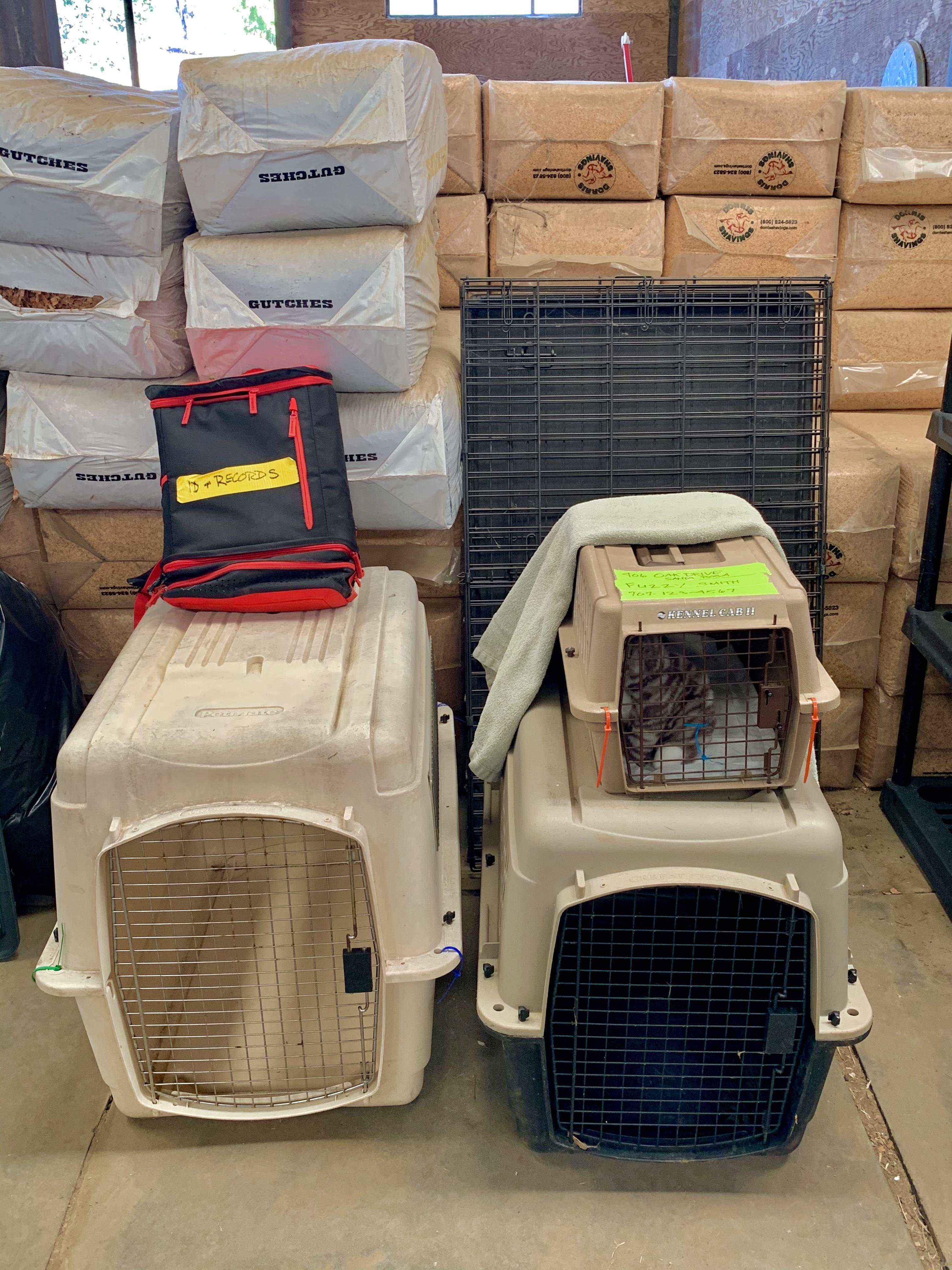 Keep your Pet DAP with Crates