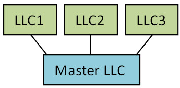 What is a Series LLC? | Illinois Series LLCs Explained