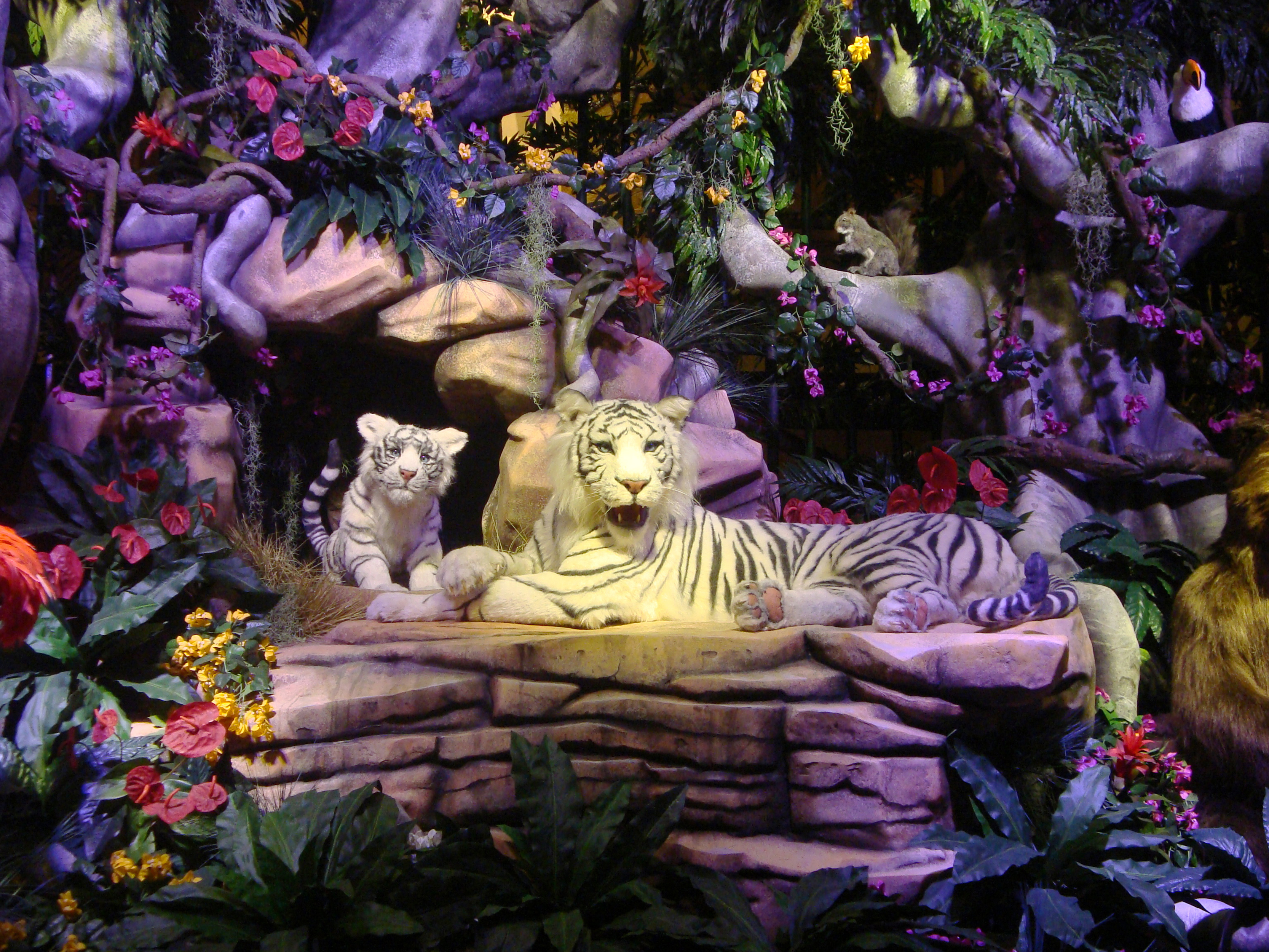 White Tiger Mountain