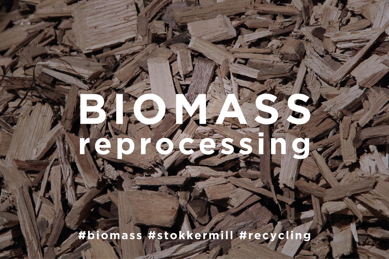 Trattamento delle biomasse