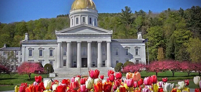 Vermont Launches Opiate Treatment - Freedom From Addiction