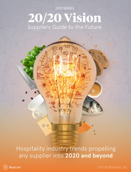Cover of the 2017 Edition 2020 Vision Ebook