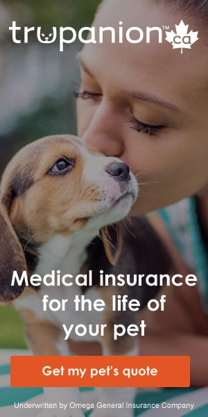 trupanion assurance animaux