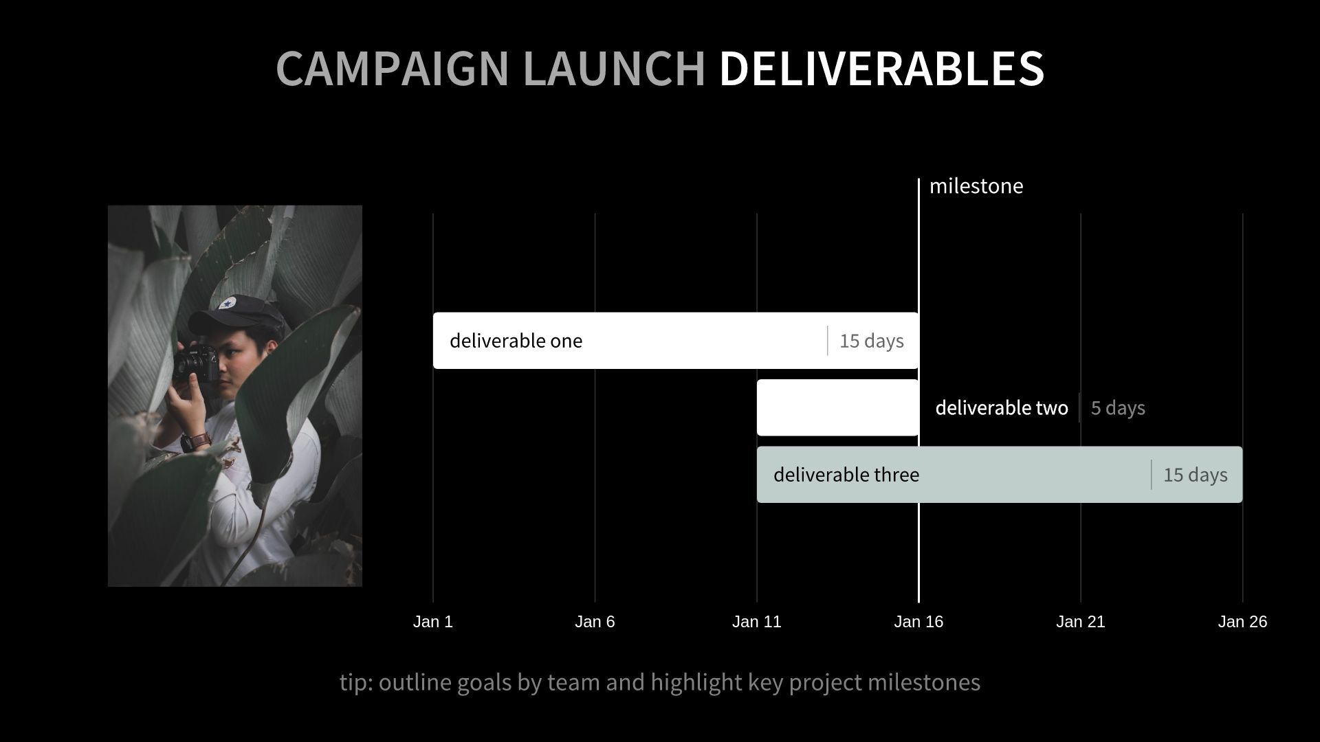 Campaign Deliverables