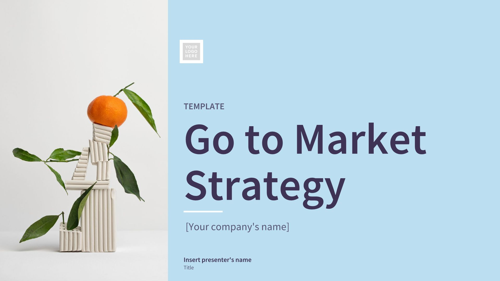 Go to Market Strategy Example