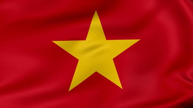 Vietnam Dalat, вьетнамский кофе в зернах, арабика