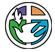 Langley Mennonite Fellowship