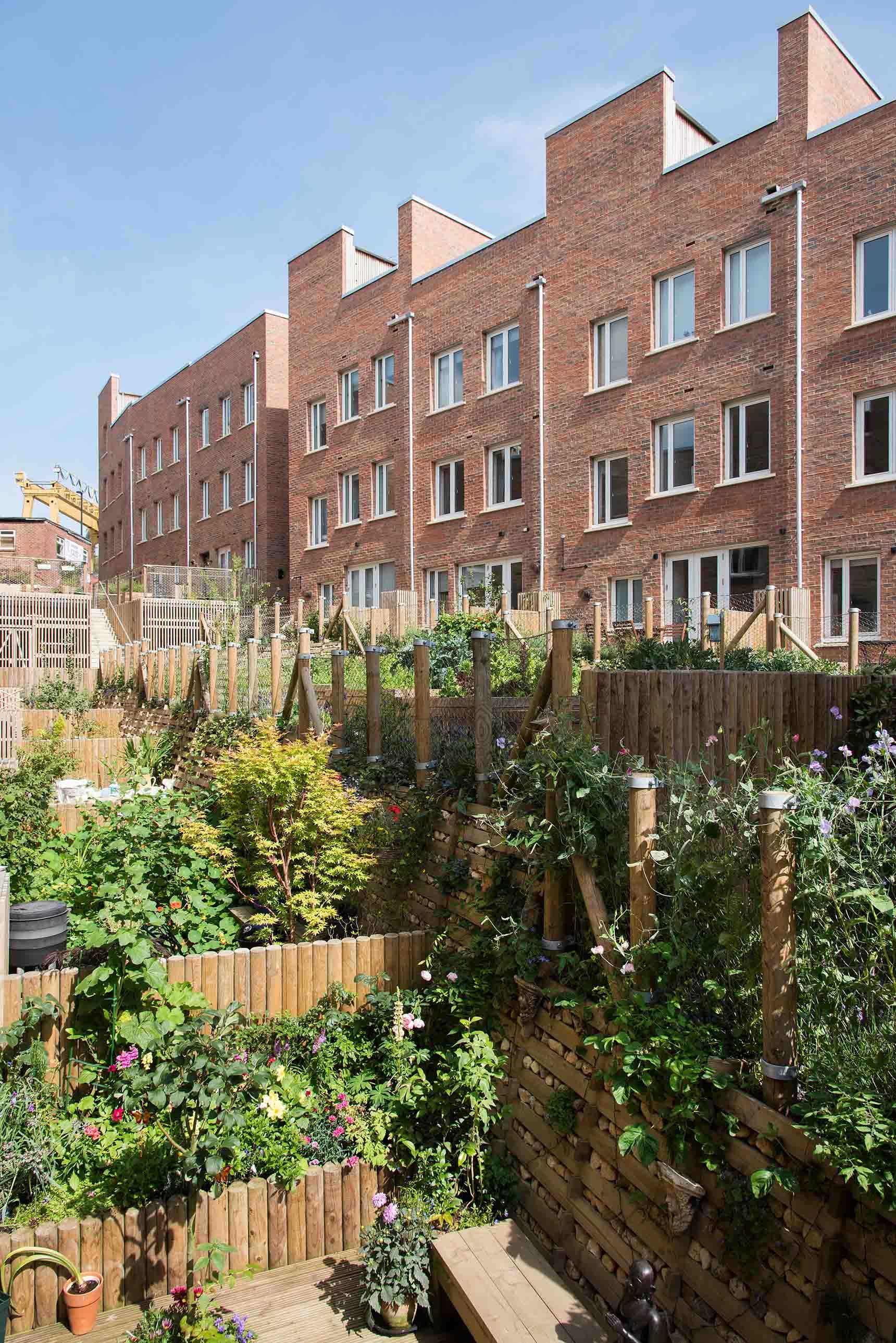 Ash Sakula The Malings Ouseburn Newcastle back garden green allotments