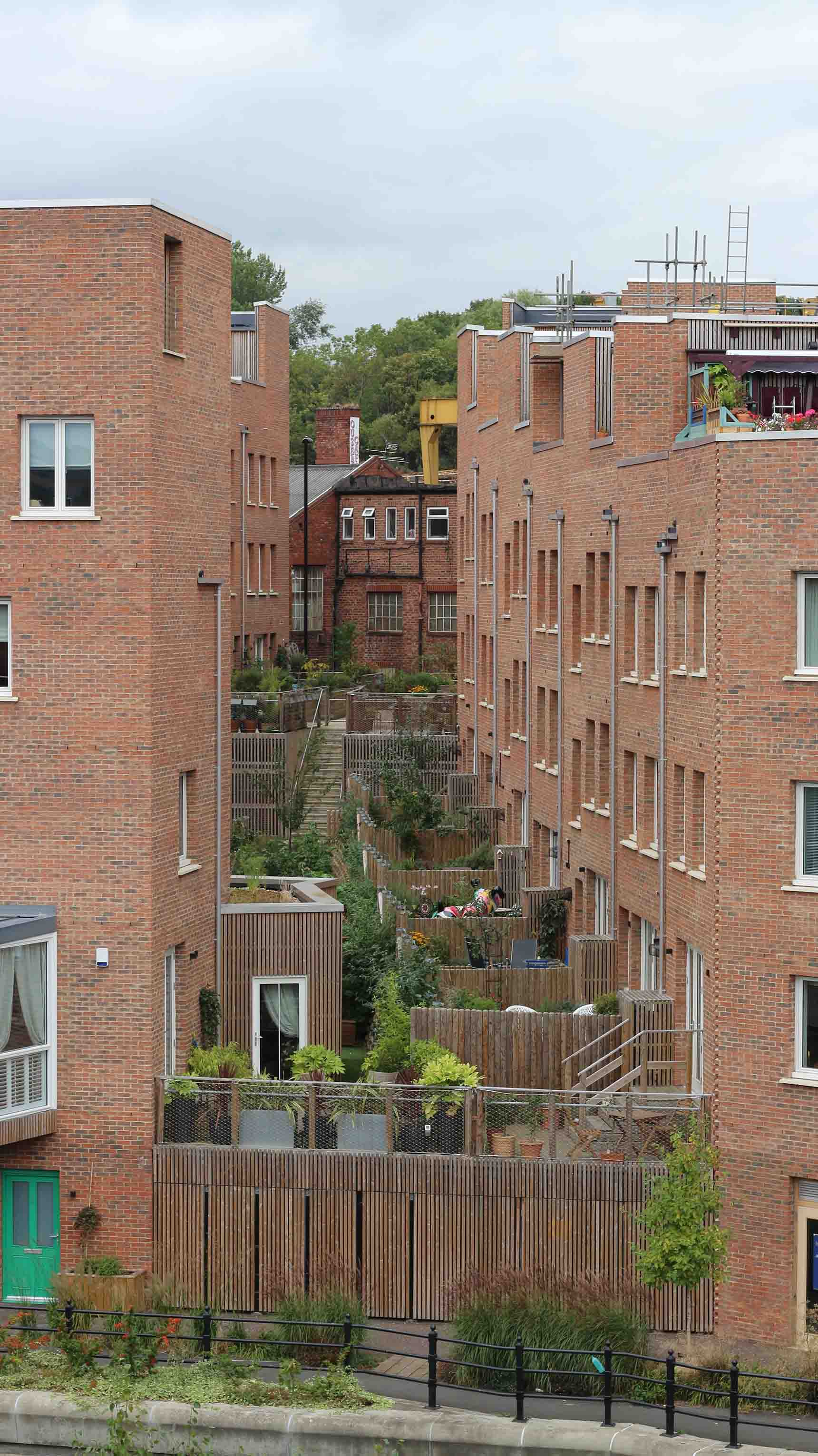 Back gardens step up the steep Ouseburn valley.