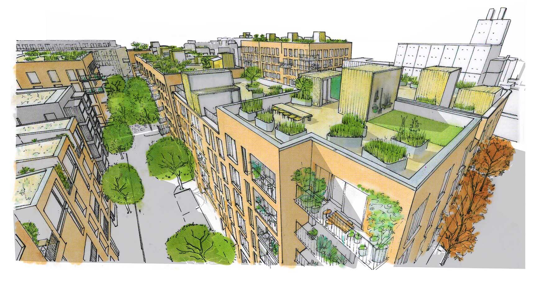 Wickside Hackney London Housing development Ash Sakula sketch view of the rooftop gardens