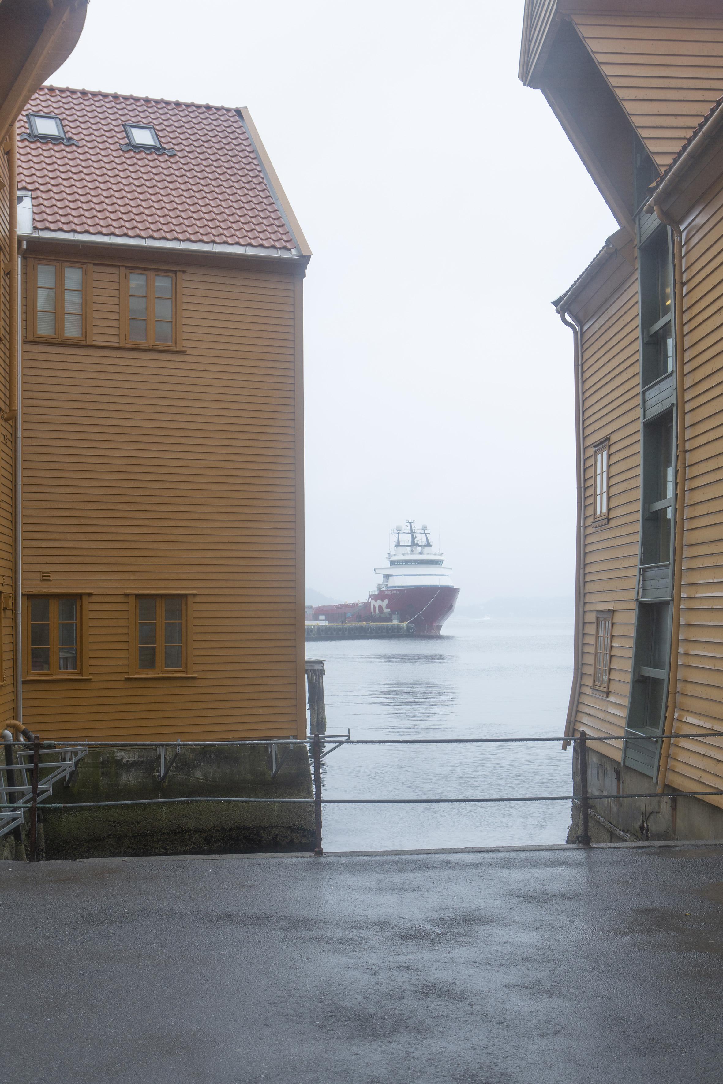Hafen von Bergen. Foto: Giulia Mangione