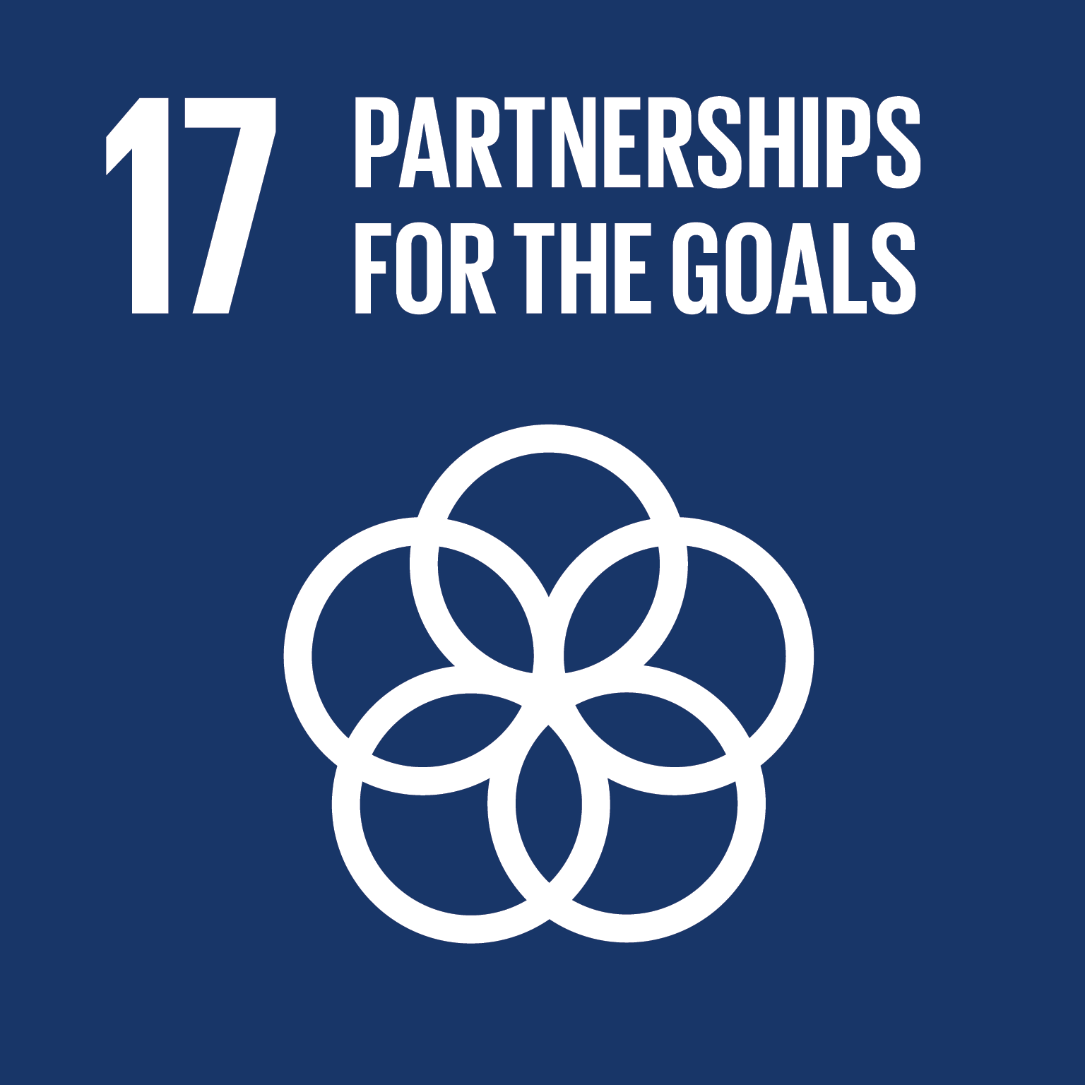 SDG 17 Sustainable Development Goal