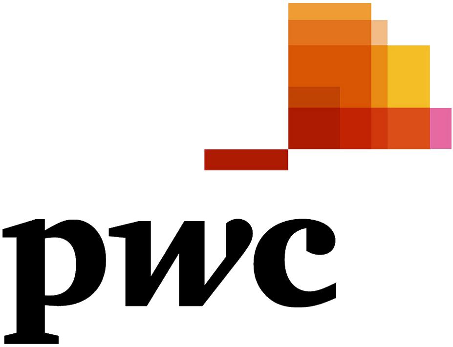 PwC Logo YLD