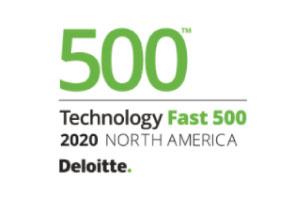 Deloitte 500 Award