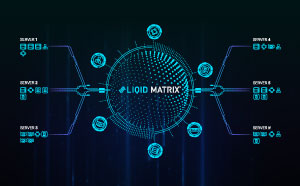 Liqid Matrix