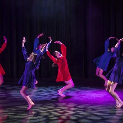 Purple Rain | Northern Beaches Secondary College Mackellar Girls Campus, Years 9-12