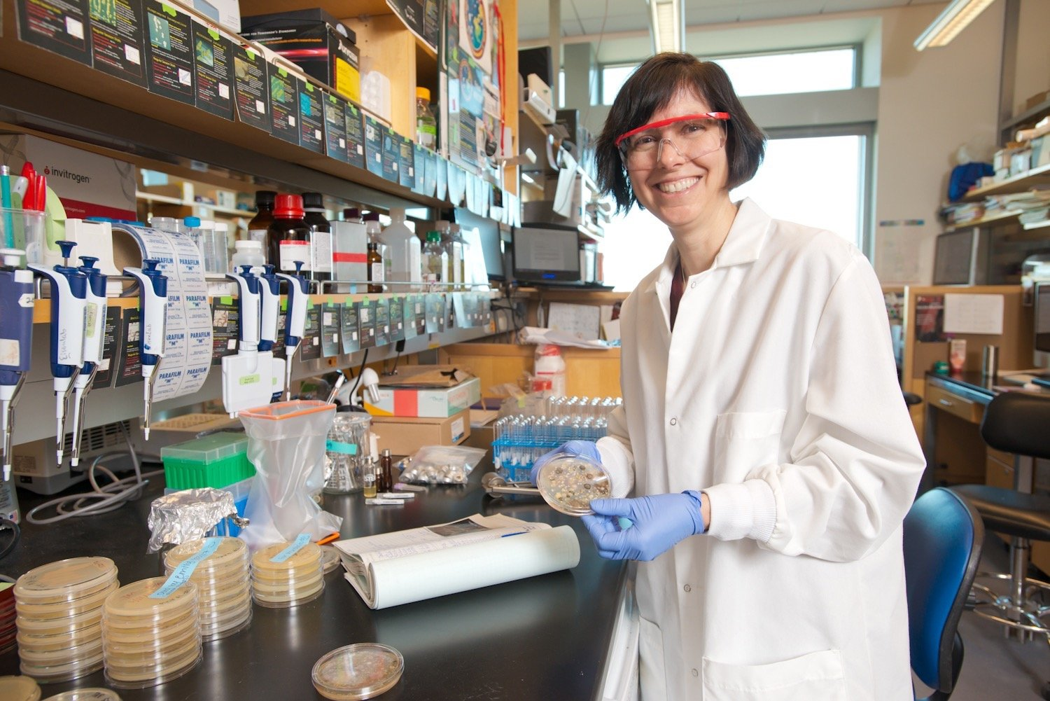 Holly Ganz in the lab at AnimalBiome