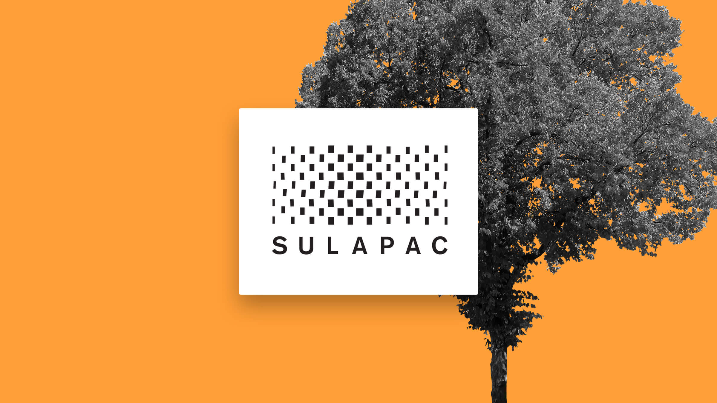 Sulapac Team Accelerates Renewables in Packaging