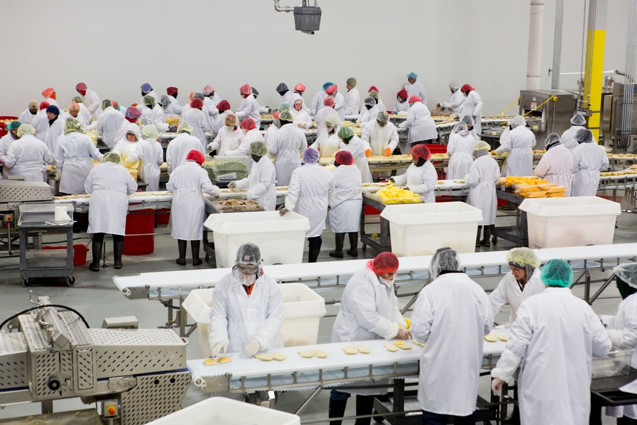 Food Manufacturing Assembly Line
