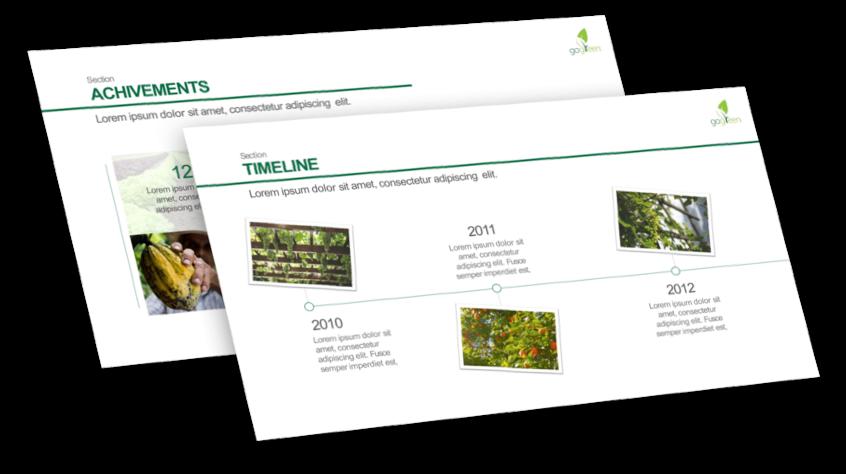 company presentation example