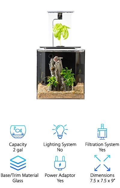 Looking for something a little more eco-friendly? The EcoQube Desktop Betta Fish Tank is a great way to get started in the awesome, environmentally-friendly world of aquaponics. What is aquaponics, you ask? It's all about putting organisms that work well together in the same place. Your fish makes a perfect environment to grow some edible plants, while the plants make a better home for your fish. This symbiosis ensures you have a great home for your fish and a plant for you to eat as well! With your EcoQube Desktop Betta Fish Tank, you also get a remote, an integrated aquaponic filter, the phone app, an optional UV sterilizer, and everything you need to get started in aquaponics! This beautiful tank makes for a great gift too!