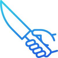 Best Santoku Knives