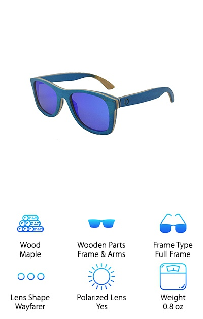 InfuseZen Skateboard Sunglasses
