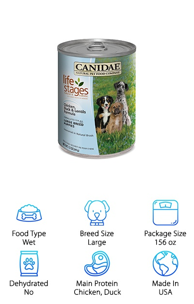 Canidae Large Breed Puppy Formula