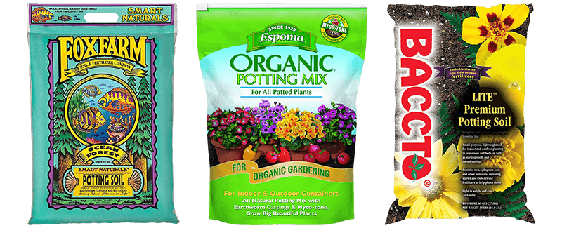 Best Potting Soils