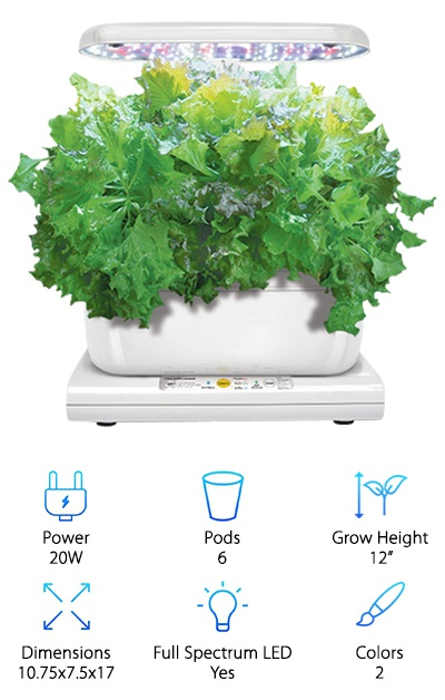 The AeroGarden Harvest is a cute little appliance available in white or black glossy plastic with an attractive control panel. The panel uses pushbuttons and lights to let you set the light cycle, and it alerts you when you need to add water and nutrients. The 12-inch grow height limits you to medium-sized sized plants and herbs, but also keeps the product relatively compact and easy to fit anywhere in your home. You can set the grow lights to different cycles based on what you're growing, and you also get seeds and nutrients for the season to get you started. Like other AeroGarden models, this hydro setup is designed to be easy to use and maintain. The six growing pods give you some room to play with what you grow, from salad greens to fresh herbs, and the hydroponic pump is so quiet you may not notice it running! Compared to other Harvest models, this one has a more basic control panel in the same push-button style with lights and diagrams with instructions on using the panel. It has a smaller footprint than the seven-pod Harvest model, measuring just 10.75 by 7.5 inches compared to the seven-pod model's 18.5 by 10.5 inches.