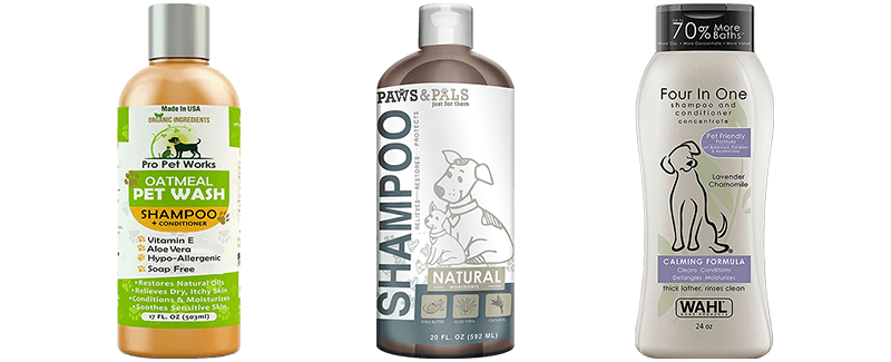 Best Smelling Shampoos for Dogs