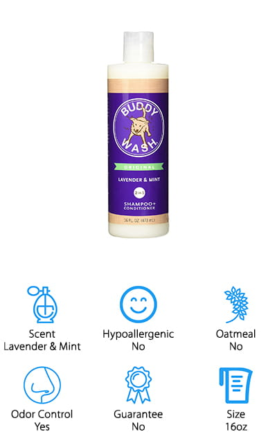 Cloudstar Lavender and Mint Shampoo