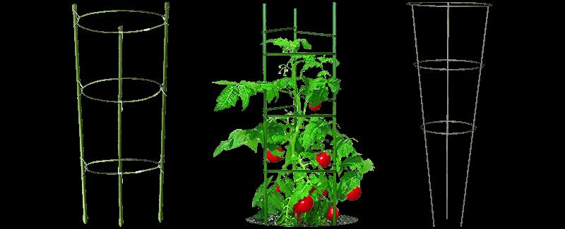 Best Tomato Trellis