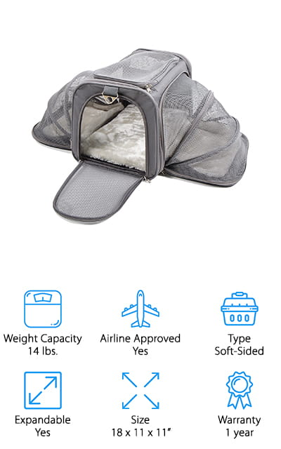 Airline Pet Carrier Size